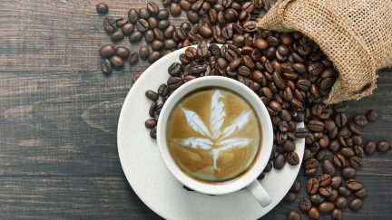 how-to-make-cbd-coffee