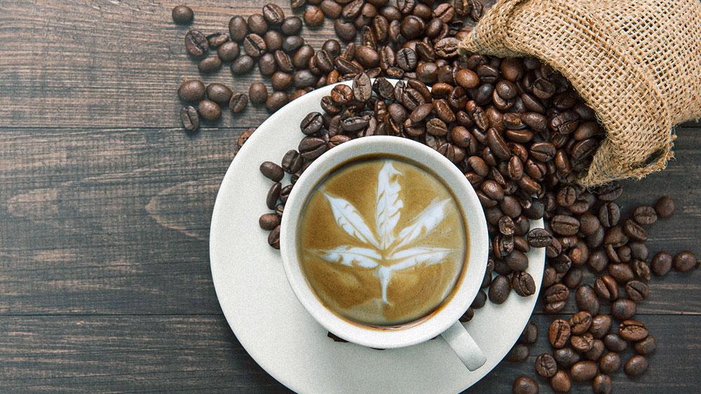 how-to-make-cbd-coffee